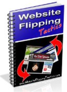 website flipping tactics