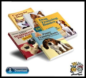 dog training essentials collection