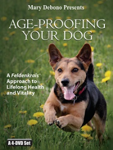age-proofing your dog video program - special offer