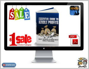 essential guide to kindle profits
