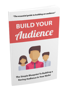 ultimate online audience building guide