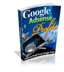 google adsense profit