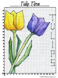 tulipsq1_e