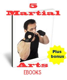 5 martial arts ebooks - plus bonus
