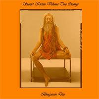 mp3 download: bhagavan das live! sunset kirtan, volume #2