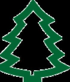 Christmas Tree - eps | Other Files | Clip Art