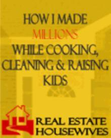 how i made millions while cooking, cleaning and raising kids