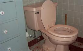 don't call the plumber yet  installs and toilet repairs