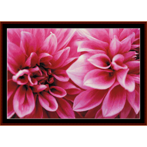 Dahlias - Floral cross stitch pattern by Cross Stitch Collectibles | Crafting | Cross-Stitch | Wall Hangings