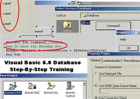 Microsoft Visual Basic 6.0 Database Programming Training Program For D | Softwa