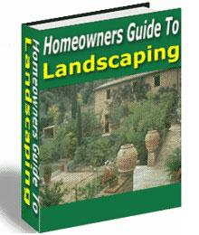 homeowners guide to landscaping