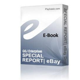 SPECIAL REPORT: eBay Dropship Profits, by Tim Knox | eBooks | Business and Money