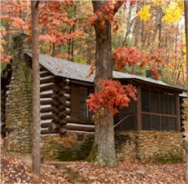 Tin Roof Cabin