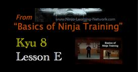 Ninjutsu - 8th Kyu - E - SAN SHIN - 3 Hearts Form - Basics of Ninja Training