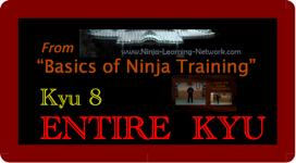 Basics of Ninja Training - 8th Kyu - LARGE MOVIE VERSION - Bujinkan / Ninjutsu | Movies and Videos | Sports