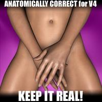 anatomically correct for v4