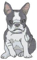 Boston Terrier Cross Stitch Pattern | eBooks | Arts and Crafts