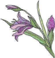 Purple Lily Cross Stitch Pattern | eBooks | Arts and Crafts