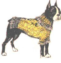 Knitted Dog Blanket Pattern | eBooks | Arts and Crafts