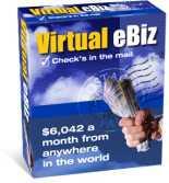 Virtual eBiz | eBooks | Business and Money