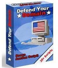 Defend Your Domain | eBooks | Internet