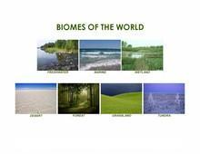 Biomes of the World Picture Activity Cards | eBooks | Education