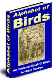 The Illustrated Alphabet of Birds | eBooks | Children's eBooks