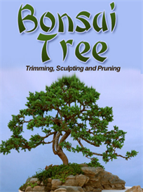 bonsai package | eBooks | Home and Garden