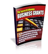 How To Successfully Apply For Business Grants | eBooks | Business and Money