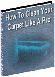 How to Clean Your Carpet Like a Pro | eBooks | Home and Garden