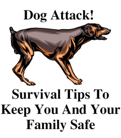 Survival Tips To Keep You And Your Family Safe | eBooks | Pets