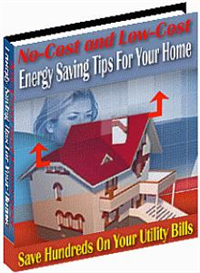 No-Cost and Low-Cost Energy Saving Tips For Your Home | eBooks | Business and Money