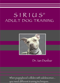 sirius adult dog training