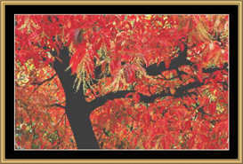 Burst Of Fall | Crafting | Cross-Stitch | Other