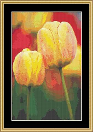Yellow Tulips Iii | Crafting | Cross-Stitch | Other