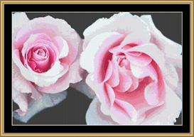 Pink Roses   Crafting   Cross-Stitch   Other