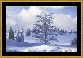 Winter Landscape | Crafting | Cross-Stitch | Other