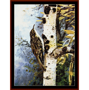 Brown Creeper - Wildlife cross stitch pattern by Cross Stitch Collectibles | Crafting | Cross-Stitch | Wall Hangings