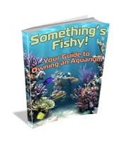 Your Guide to Setting Up an Aquarium for Adobe Reader | eBooks | Home and Garden