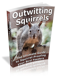 Outwitting Squirrels- -The Ultimate Guide | eBooks | Home and Garden