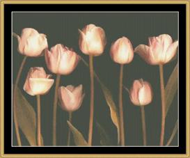 Peach Chorus | Crafting | Cross-Stitch | Other