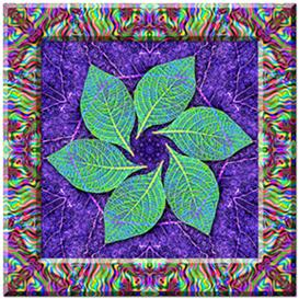 photoshop kaleidoscope + pattern + frame + parchment effects actions, mac or pc -