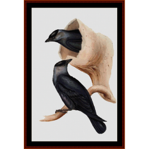 Jackdaw - Wildlife cross stitch pattern by Cross Stitch Collectibles | Crafting | Cross-Stitch | Wall Hangings
