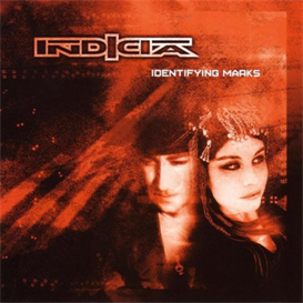 Indicia Identifying Marks 320kbps MP3 album | Music | Electronica