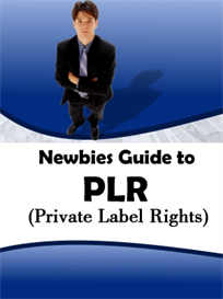 Newbies Guide To PLR