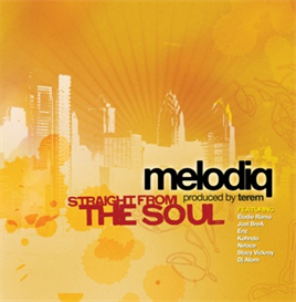 melodiq - straight from the soul