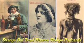 Strange But True! Bizarre Vintage Postcards PDF Ebook Album | eBooks | Humor