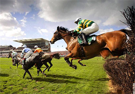 grand national horse racing system