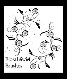 Floral Swirl Brushes | Software | Add-Ons and Plug-ins