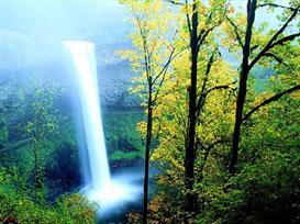 Wonderful Spring Fall Photo | eBooks | Arts and Crafts